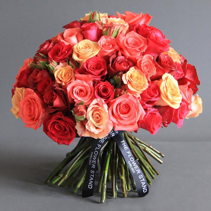 بالصور صور اجمل ورد , صور وقت تزهير الورد رائعة 3224 8