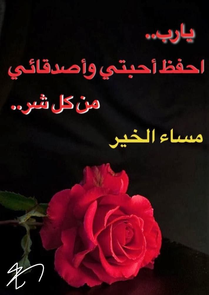 بالصور مساء الخير صور , اجمل المسائيات على الاحباء 3269 2