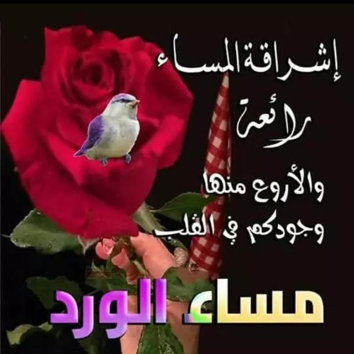 صورة مساء الخير صور , اجمل المسائيات على الاحباء