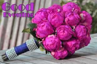 بالصور رسائل مساء الخير للاصدقاء , اجمل رسايل للاصدقاء 3273 12 310x205