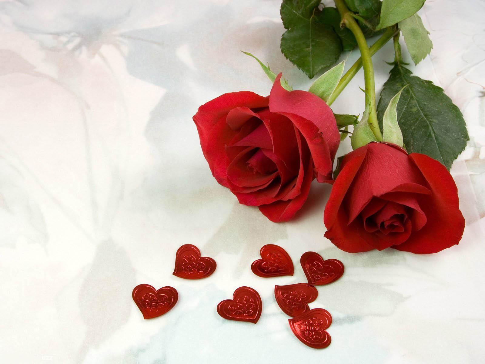 صورة صور ورد حب , الورد وتعبيره عن المحبة والرومانسية بين العشاق