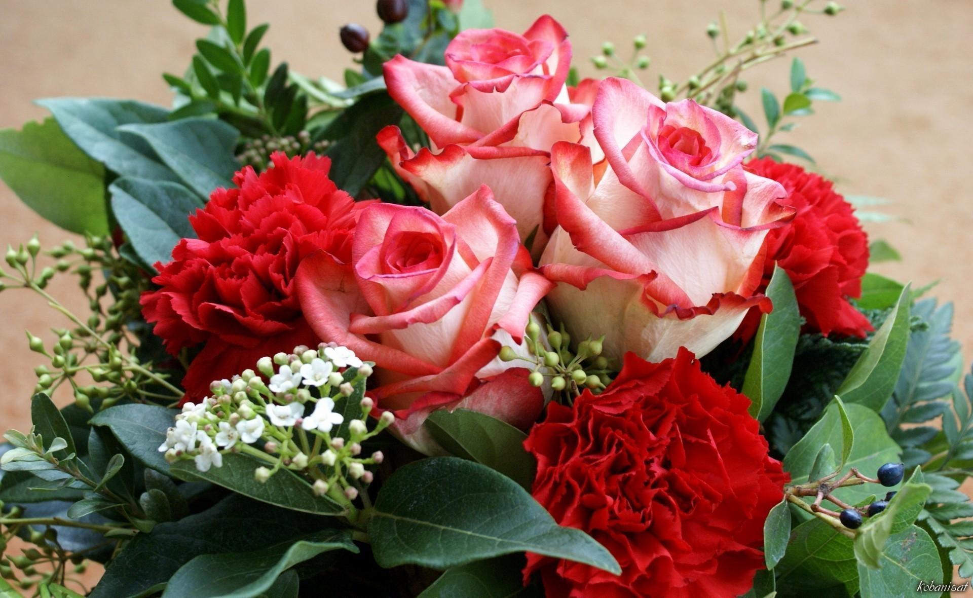 بالصور صور ورد حب , الورد وتعبيره عن المحبة والرومانسية بين العشاق 3284 2