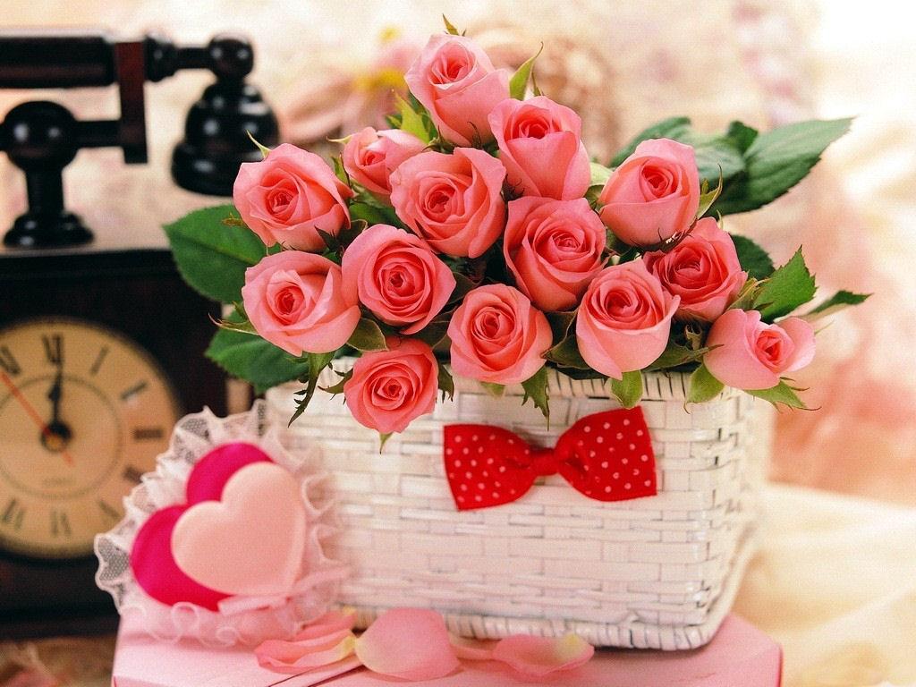 بالصور صور ورد حب , الورد وتعبيره عن المحبة والرومانسية بين العشاق 3284 3