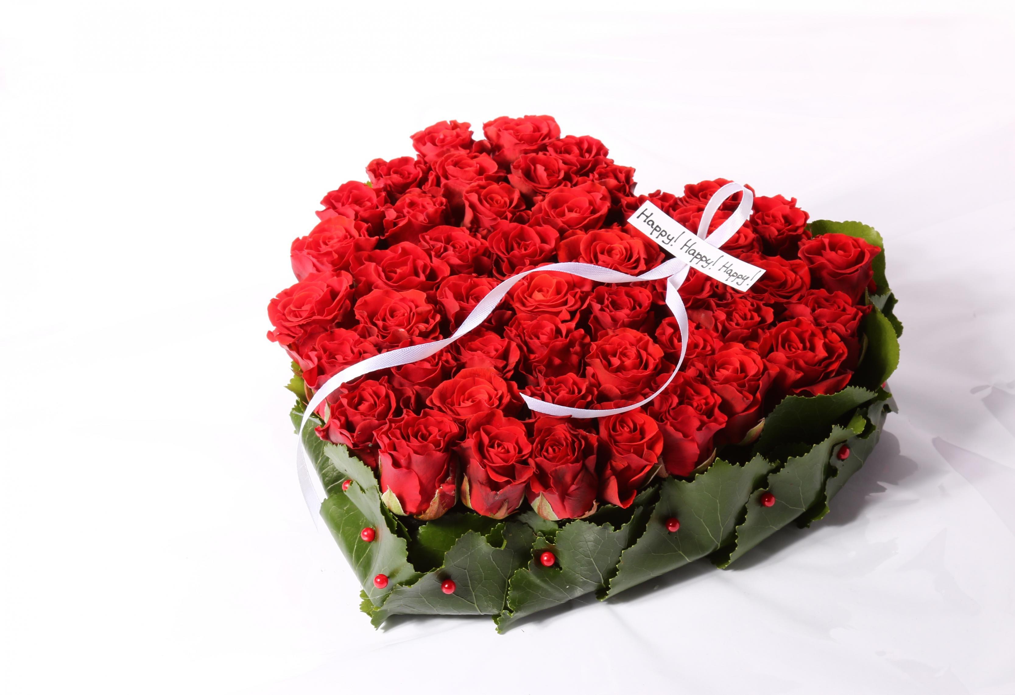 بالصور صور ورد حب , الورد وتعبيره عن المحبة والرومانسية بين العشاق 3284 6