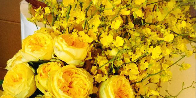 بالصور صور ورود روعه , التقاط سحر الورود الطبيعية فى صور خاصة رائعة 1905 12 660x330