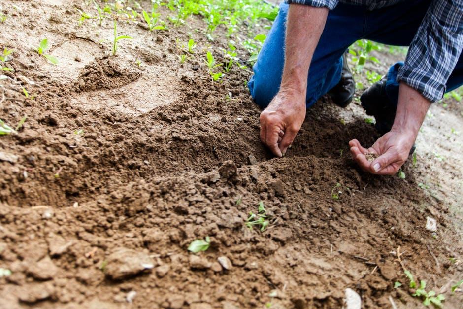 بالصور بحث عن التربة , التربه ومكوناتها الرائعة