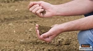 بالصور بحث عن التربة , التربه ومكوناتها الرائعة 6977 13