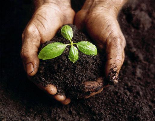 بالصور بحث عن التربة , التربه ومكوناتها الرائعة 6977 16