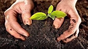 بالصور بحث عن التربة , التربه ومكوناتها الرائعة 6977 18