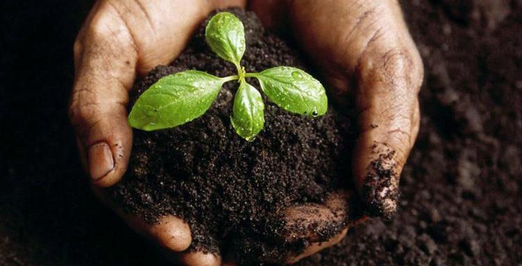 بالصور بحث عن التربة , التربه ومكوناتها الرائعة 6977 19