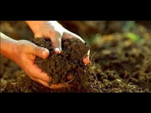 بالصور بحث عن التربة , التربه ومكوناتها الرائعة 6977 21