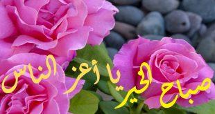 صورة صباح الورد , كلمات صباحية رقيقة للاصدقاء