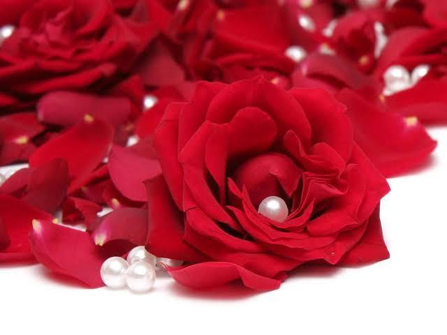 صورة صور عن الورد , باقة ورد مميزة جدا