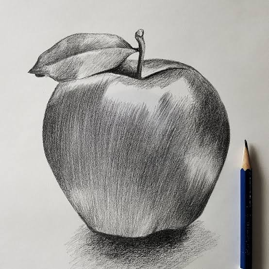 صورة رسومات بالرصاص , الى محبى الرسم اليكم هذه الصور الرقيقه 2406 8