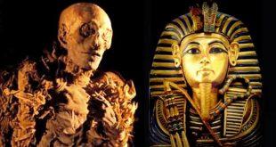 ما معنى فرعون , صفات الشخص الذى يطلق عليه هذا الاسم