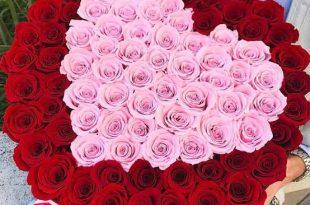 صورة احلى صور ورد , ابعتى اجمل وردة لحبيبك الغالى
