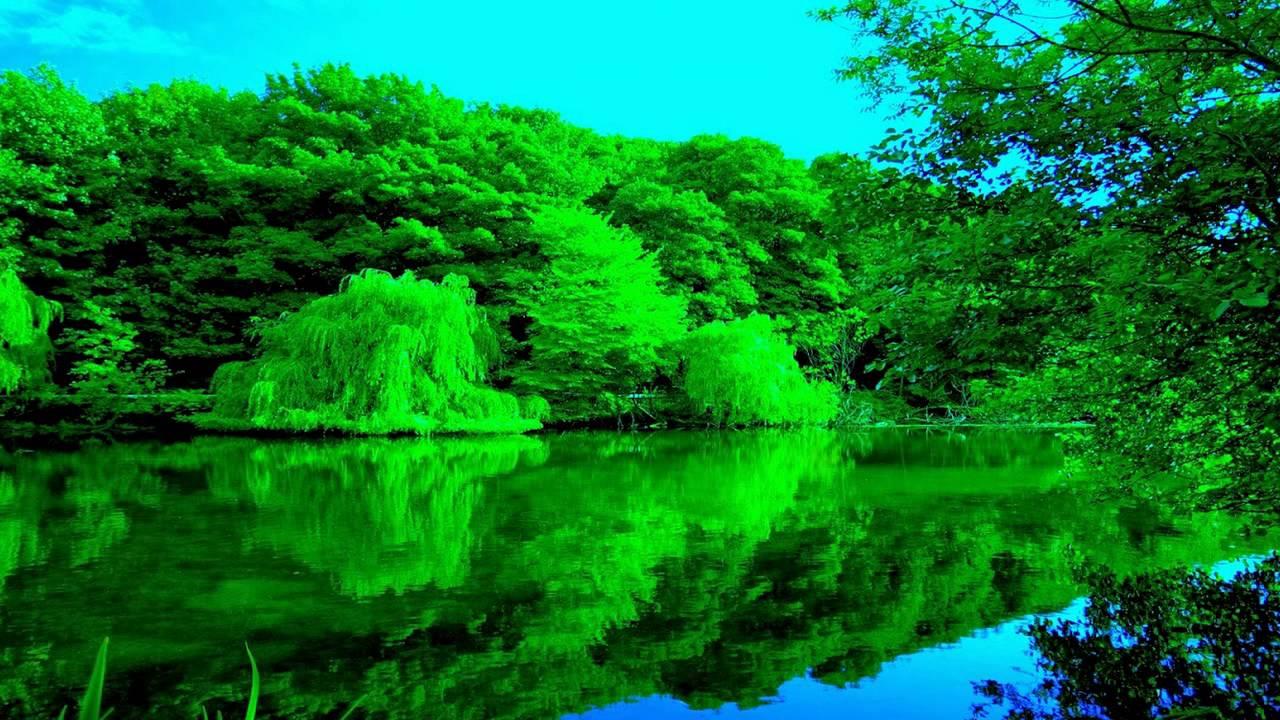 صورة صور الطبيعة الجميلة , سبحان الله معقول الصور دي عندنا في الطبيعة 3296 5