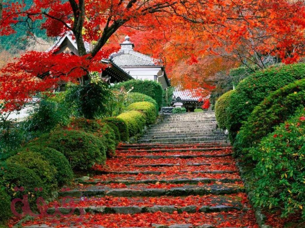 صورة صور الطبيعة الجميلة , سبحان الله معقول الصور دي عندنا في الطبيعة