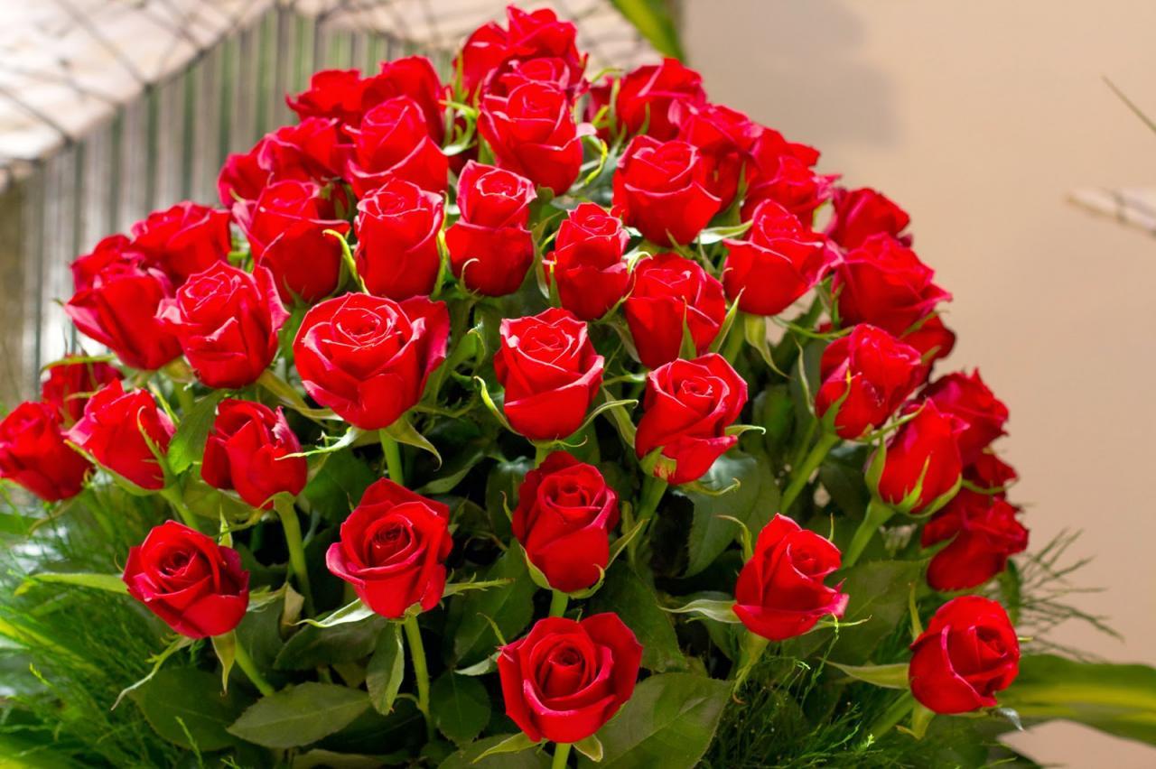 صورة صور احلى ورد , اجمل مخلوق في الوجود هو الورد