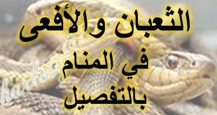 صورة رؤية الافعى في المنام , ماذا يعني الثعبان في الحلم