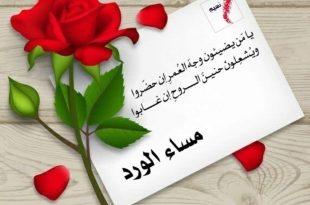 صورة مساء الورد , اجمل الورود على الاطلاق بها في المساء