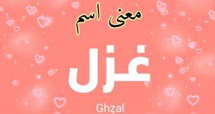 صورة معنى اسم غزل, ماذا يعني اسم الحب والغزل في التسمية للبنات