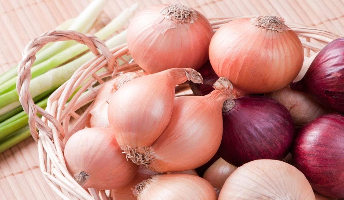 صورة فوائد البصل , ضرورة تناول البصل بشكل مستمر 1768 1