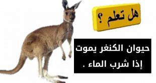 صورة هل تعلم عن الحيوانات , مالا تعرفه عن الحيوان
