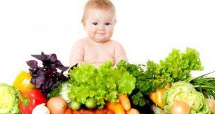 التغذية الصحية للاطفال , كيفية تغذية الصغار